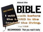 BIBLE NOTES (7)