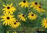 BIBLE VERSED FLOWERS (78)