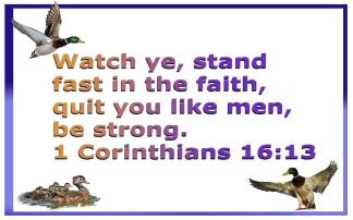 FAITHFULL (11)