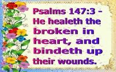 healed (12)