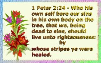 healed (4)