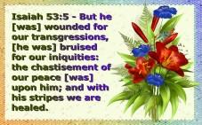 healed (5)