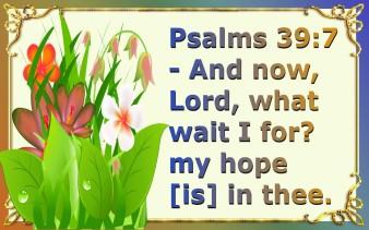 hope (7)