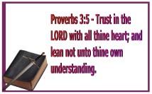 trust (1)