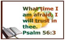 trust (11)