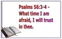 trust (2)