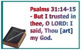 trust (8)